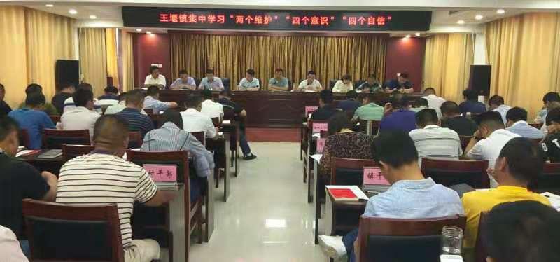 王堰镇召开深入推进形式主义官僚主义问题整改动员会 (2)